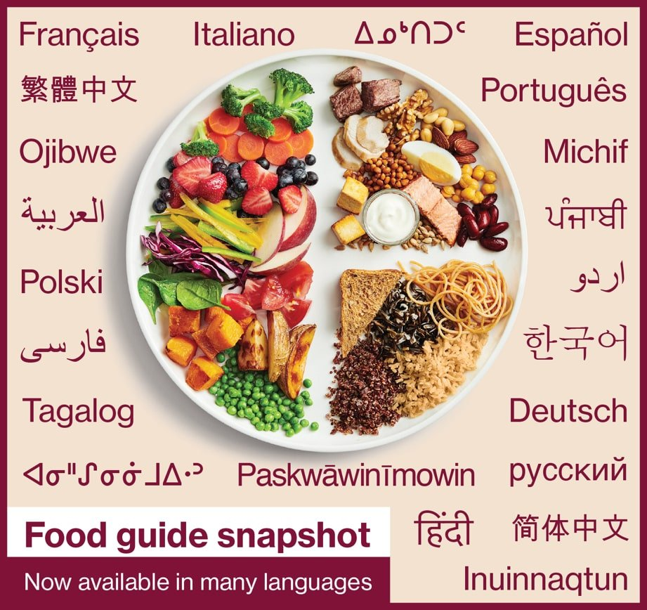 Food guide snapshot - Now available in many languages